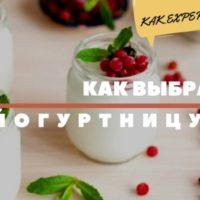 Критерии выбора йогуртницы