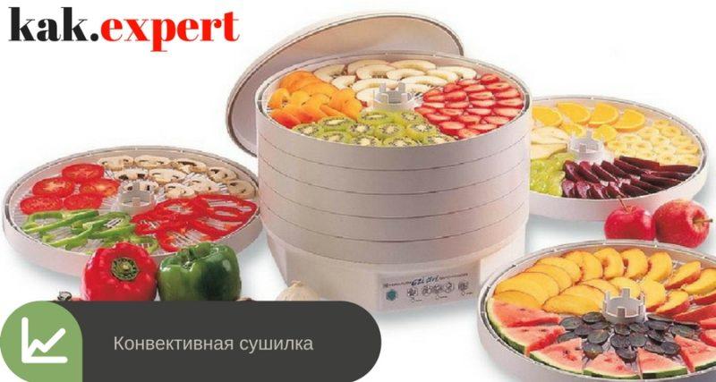 Конвективная сушилка для овощей