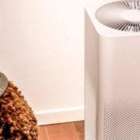 4 шага к выбору очистителя воздуха