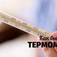 Выбираем термометр